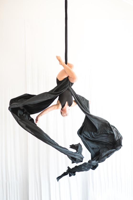 Aerial Dance Chicago by Michelle Reid